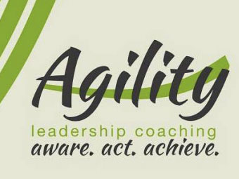 Blog Articles – Agility Executive Coaching